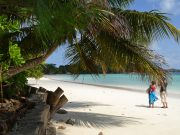Seychellois Creole Language